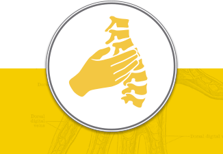 INLIV rehabilitation service icon